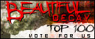 VOTE FOR THE URANIUM CAFE AT Beautiful Decay Top 100